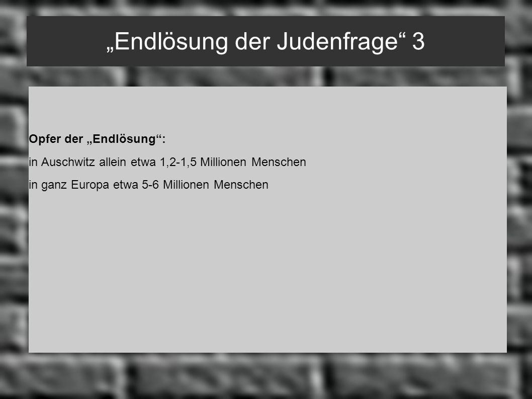 """""""Endlösung der Judenfrage 3"""