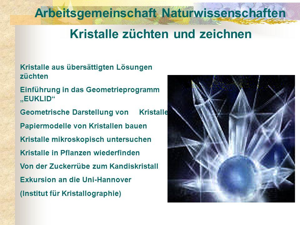 Arbeitsgemeinschaft Naturwissenschaften Kristalle züchten und zeichnen