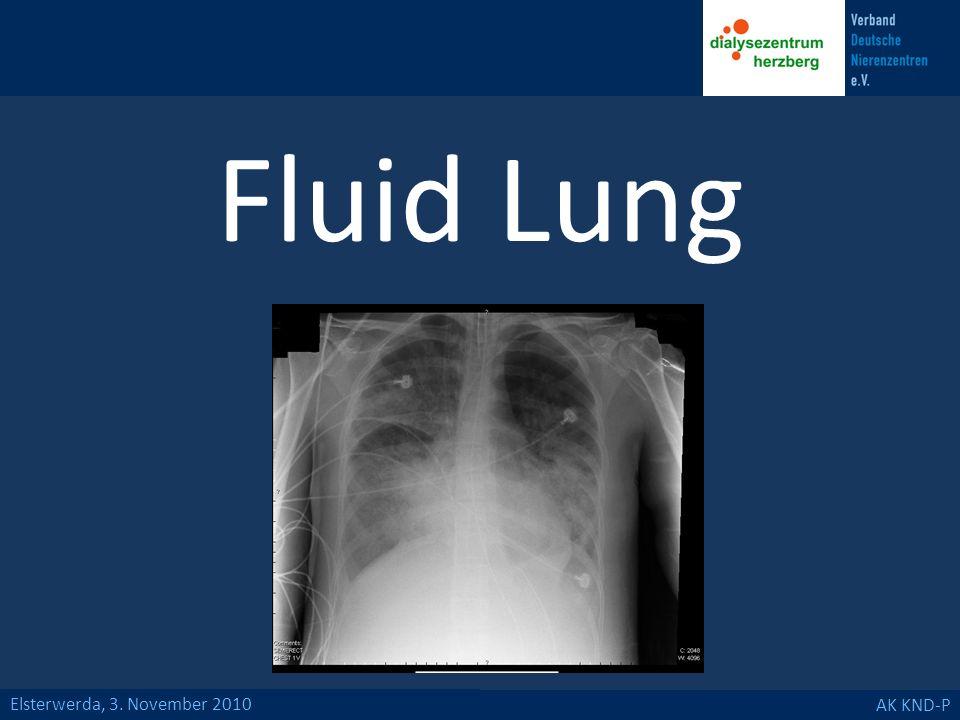 Fluid Lung