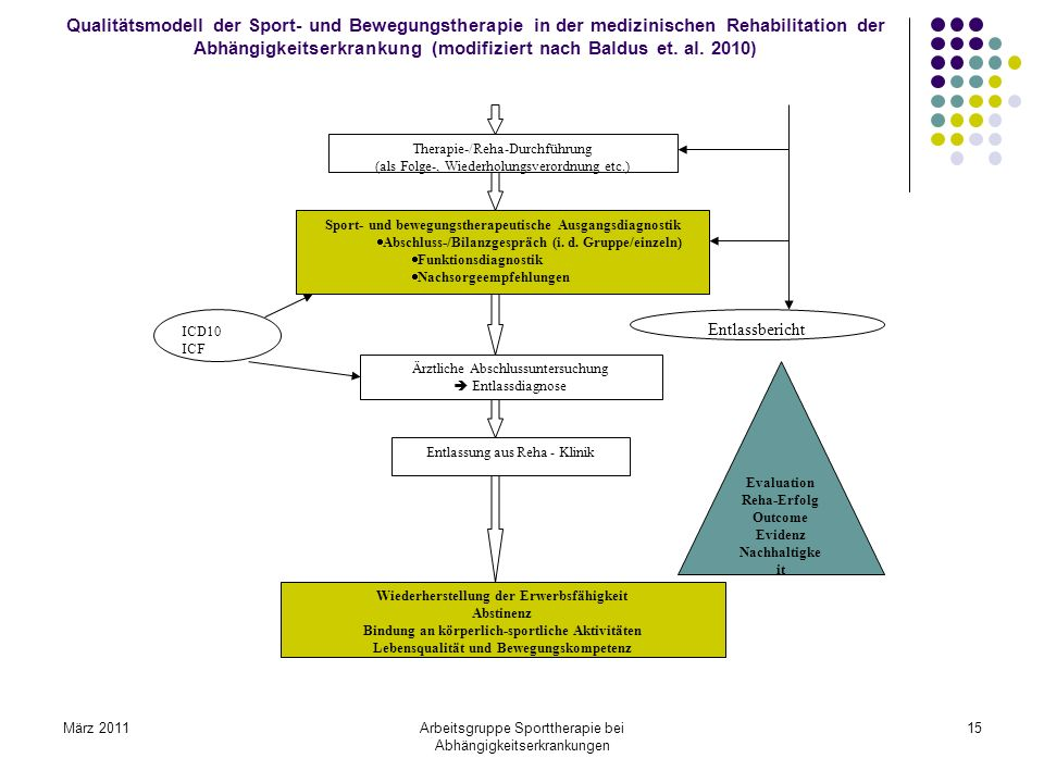 Qualitätsmodell der Sport- und Bewegungstherapie in der medizinischen Rehabilitation der Abhängigkeitserkrankung (modifiziert nach Baldus et. al. 2010)