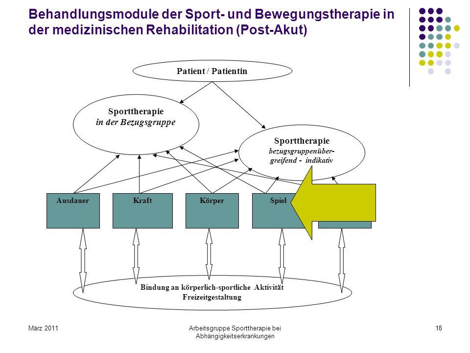 Behandlungsmodule der Sport- und Bewegungstherapie in der medizinischen Rehabilitation (Post-Akut)