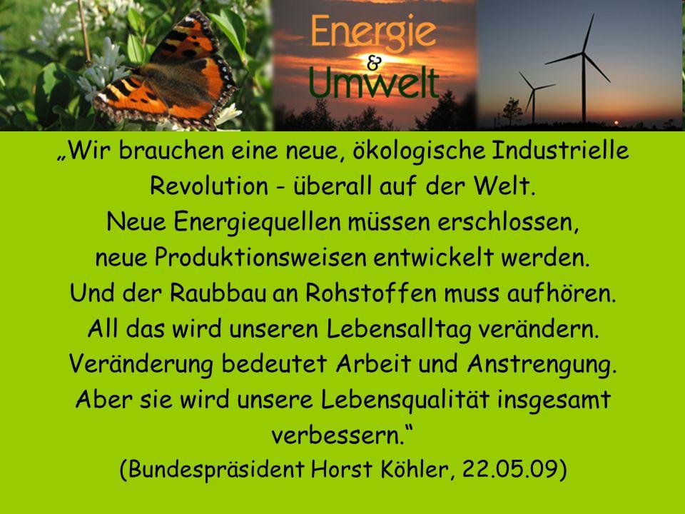 """""""Wir brauchen eine neue, ökologische Industrielle"""