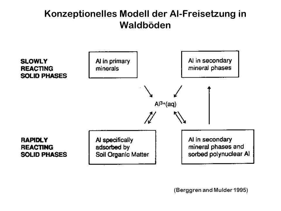 Konzeptionelles Modell der Al-Freisetzung in Waldböden