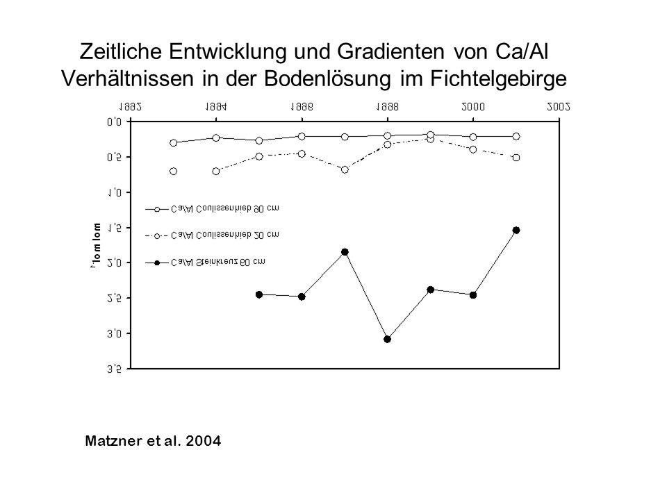 Zeitliche Entwicklung und Gradienten von Ca/Al Verhältnissen in der Bodenlösung im Fichtelgebirge