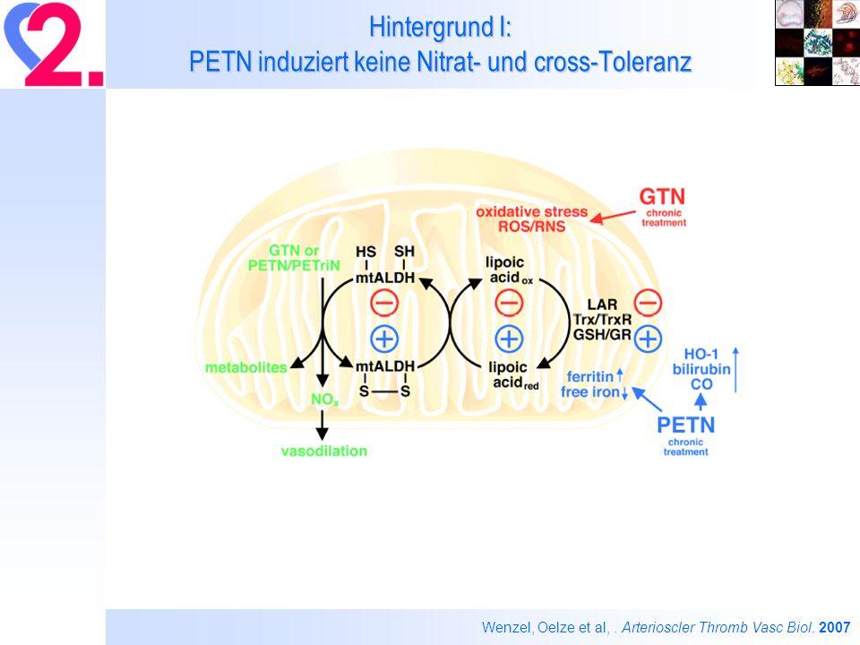 Hintergrund I: PETN induziert keine Nitrat- und cross-Toleranz