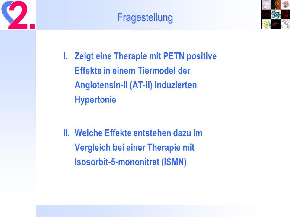 Fragestellung I. Zeigt eine Therapie mit PETN positive Effekte in einem Tiermodel der Angiotensin-II (AT-II) induzierten Hypertonie.