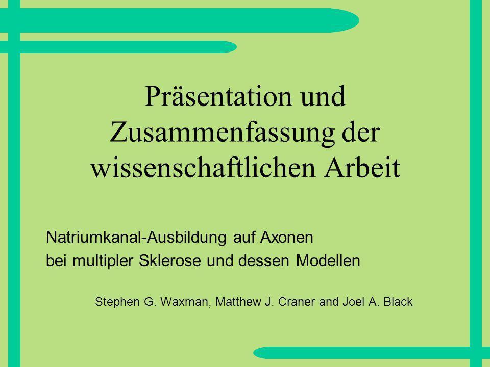 Präsentation und Zusammenfassung der wissenschaftlichen Arbeit