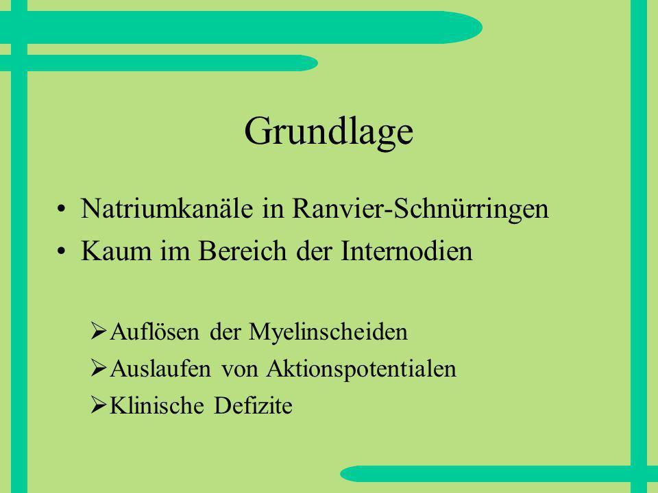 Grundlage Natriumkanäle in Ranvier-Schnürringen