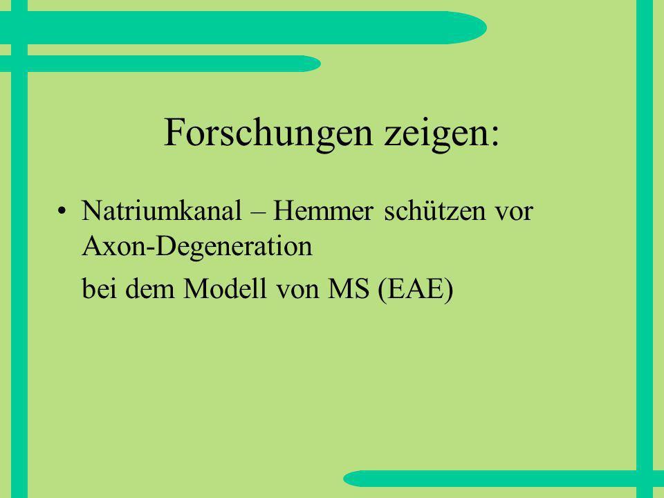 Forschungen zeigen: Natriumkanal – Hemmer schützen vor Axon-Degeneration.