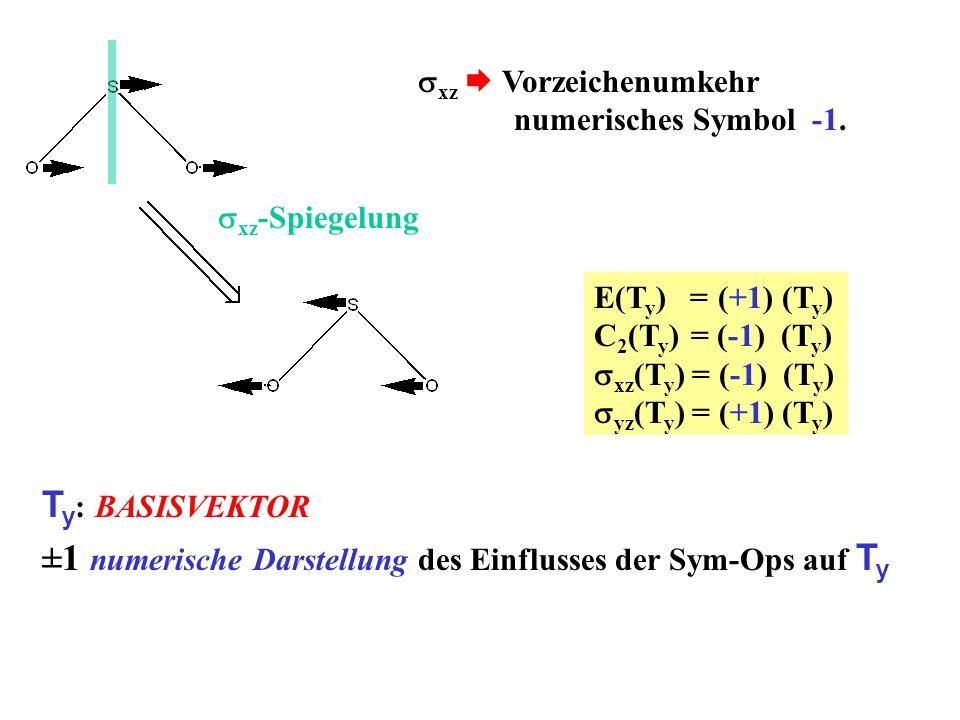 ±1 numerische Darstellung des Einflusses der Sym-Ops auf Ty