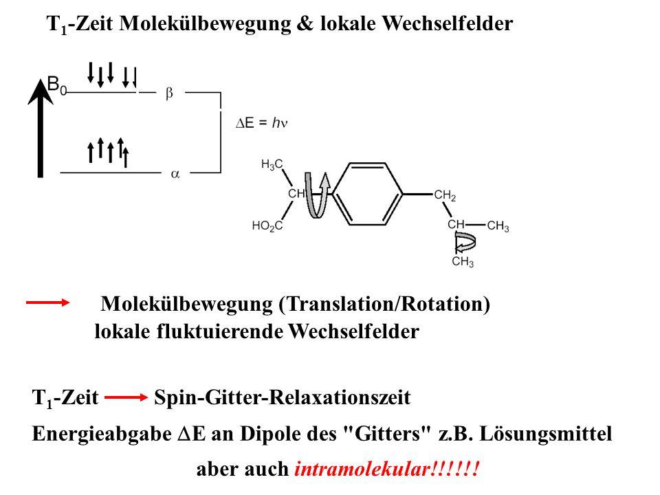 T1-Zeit Molekülbewegung & lokale Wechselfelder