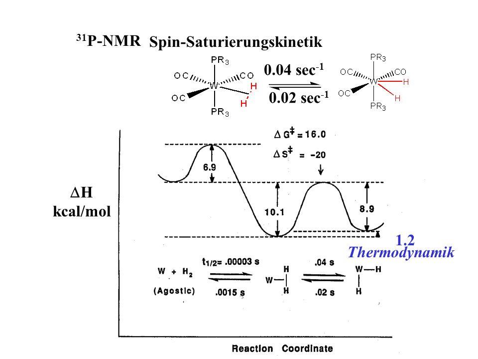Spin-Saturierungskinetik