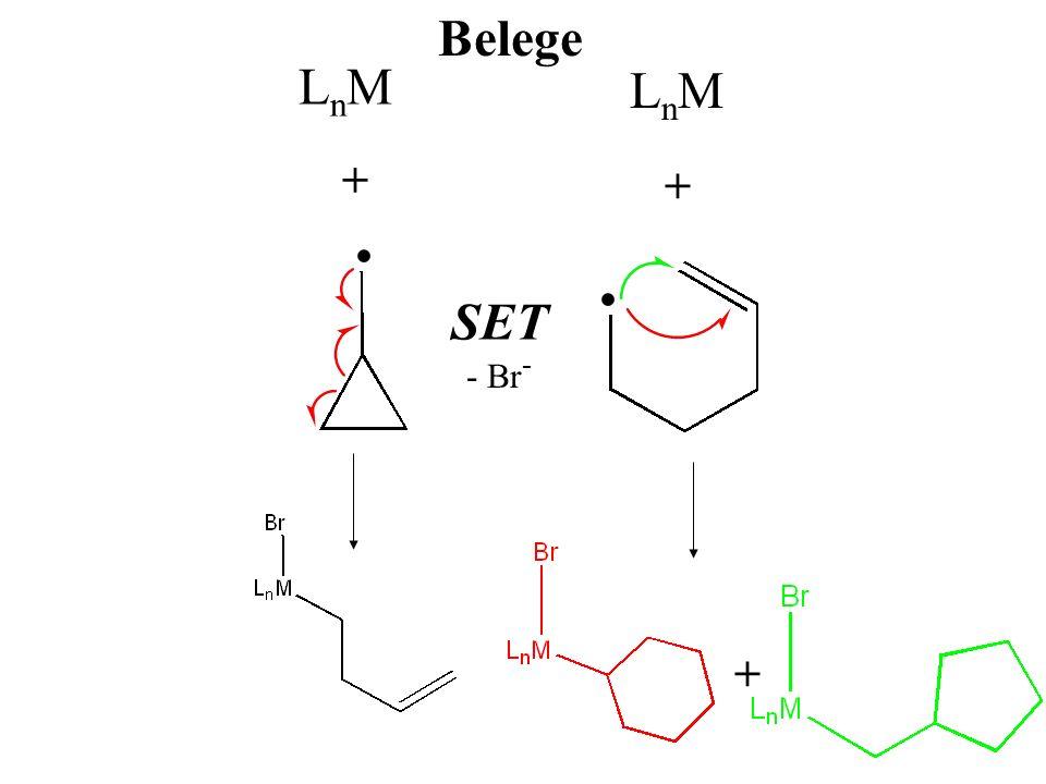 Belege LnM LnM + + • SET - Br- +