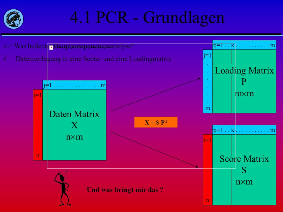 4.1 PCR - Grundlagen Loading Matrix P mm Daten Matrix X nm