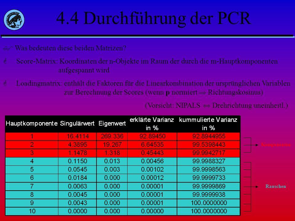 4.4 Durchführung der PCR Was bedeuten diese beiden Matrizen