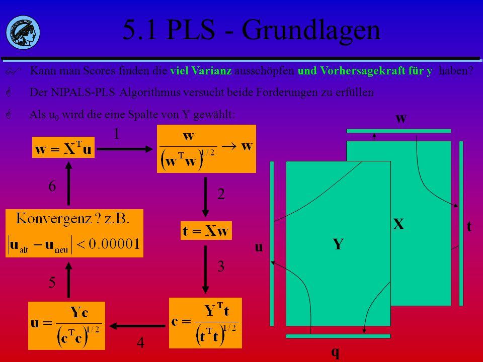 5.1 PLS - Grundlagen w 1 6 X 2 Y t u 3 5 4 q