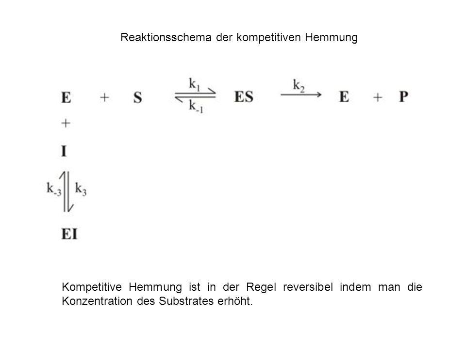Reaktionsschema der kompetitiven Hemmung