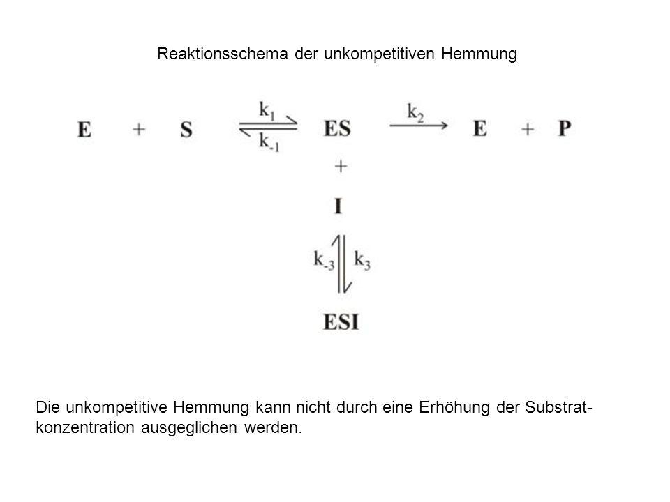 Reaktionsschema der unkompetitiven Hemmung