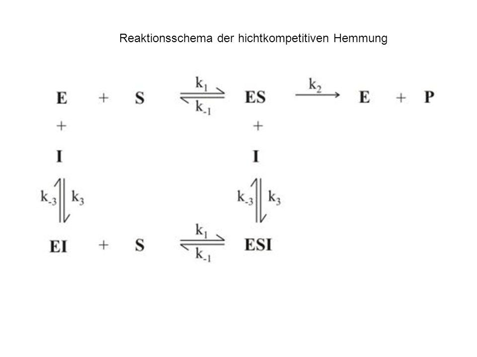 Reaktionsschema der hichtkompetitiven Hemmung