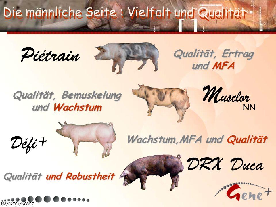 Qualität, Ertrag und MFA