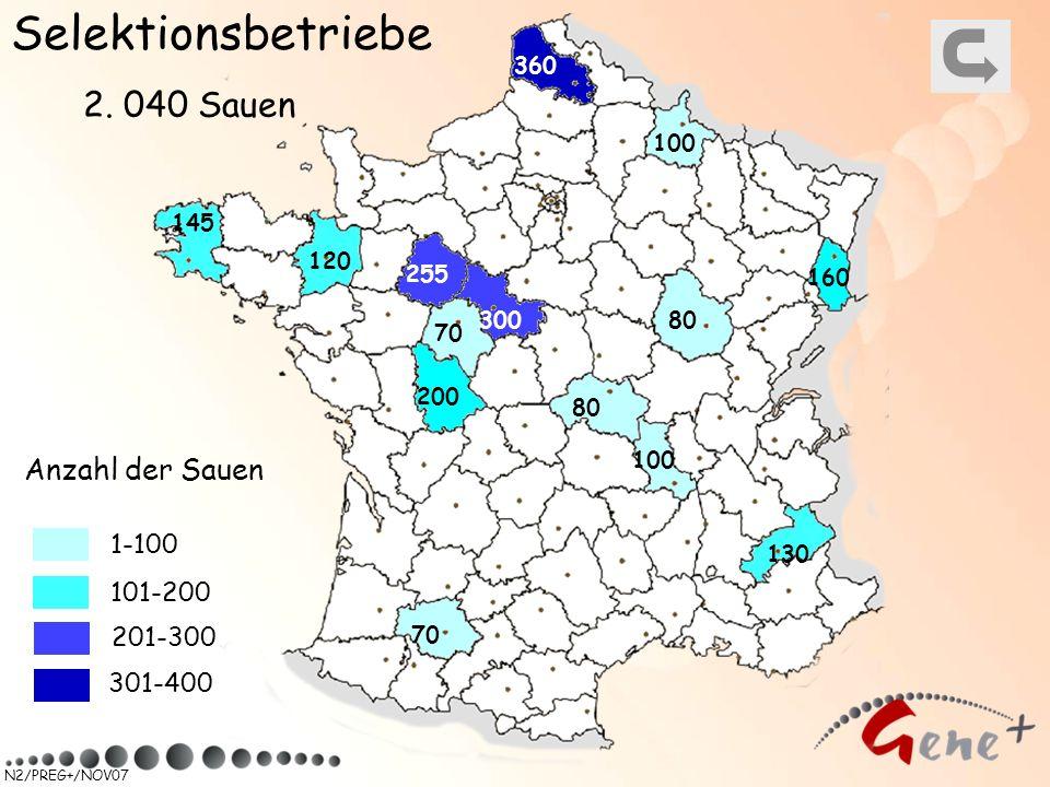 Selektionsbetriebe 2. 040 Sauen Anzahl der Sauen 1-100 101-200 201-300