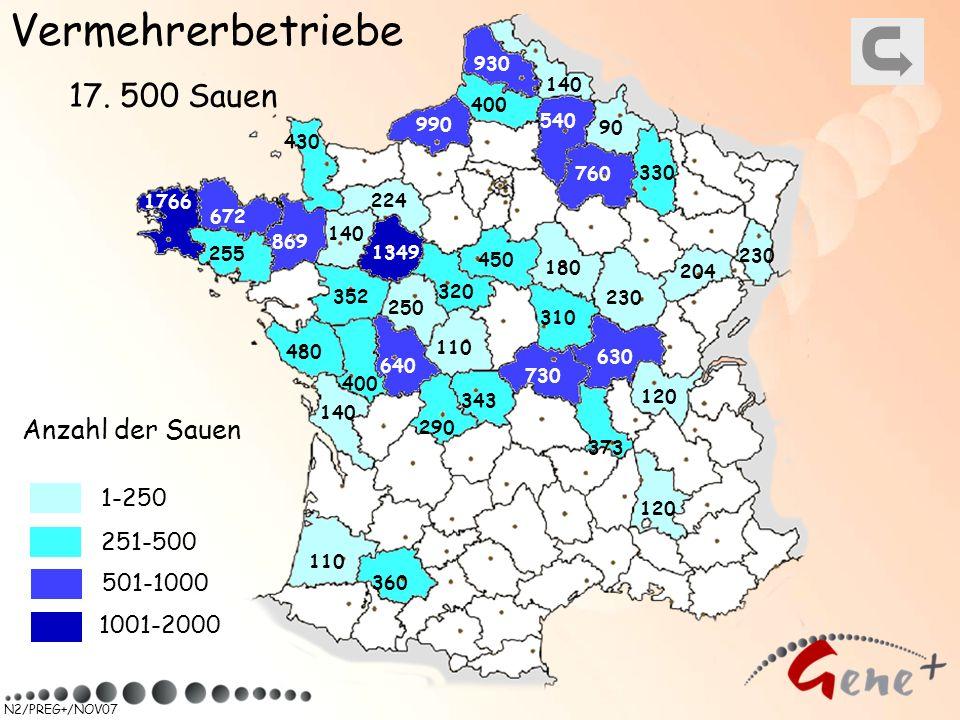 Vermehrerbetriebe 17. 500 Sauen Anzahl der Sauen 1-250 251-500
