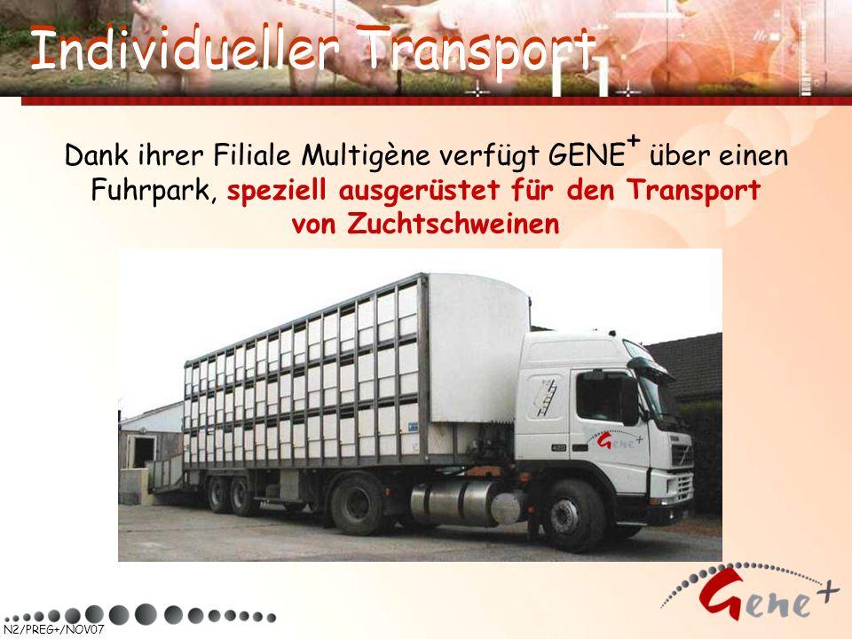 Individueller Transport Individueller Transport