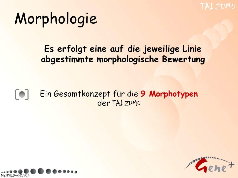 Ein Gesamtkonzept für die 9 Morphotypen der TAI ZUMU
