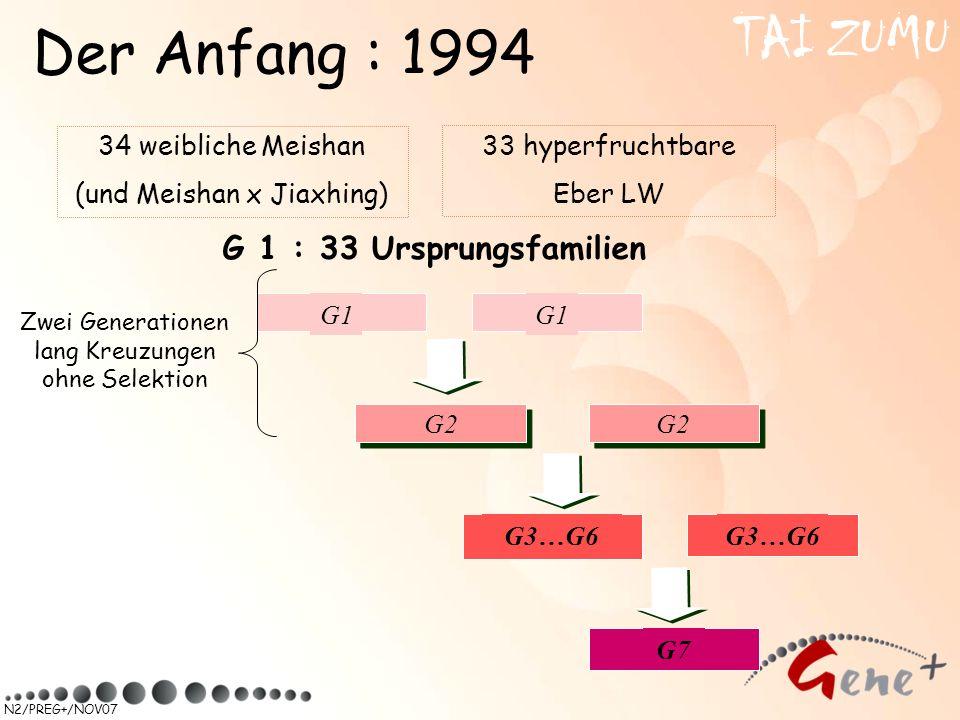 TAI ZUMU Der Anfang : 1994 G 1 : 33 Ursprungsfamilien