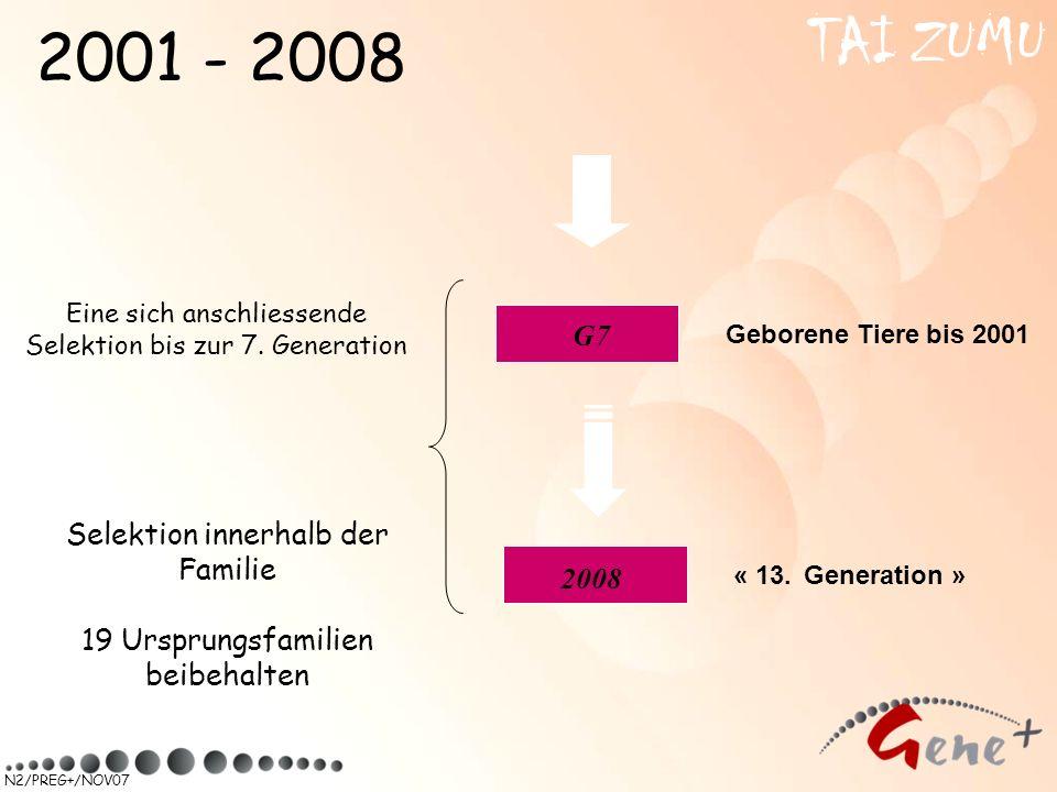TAI ZUMU 2001 - 2008 G7 Selektion innerhalb der Familie 2008