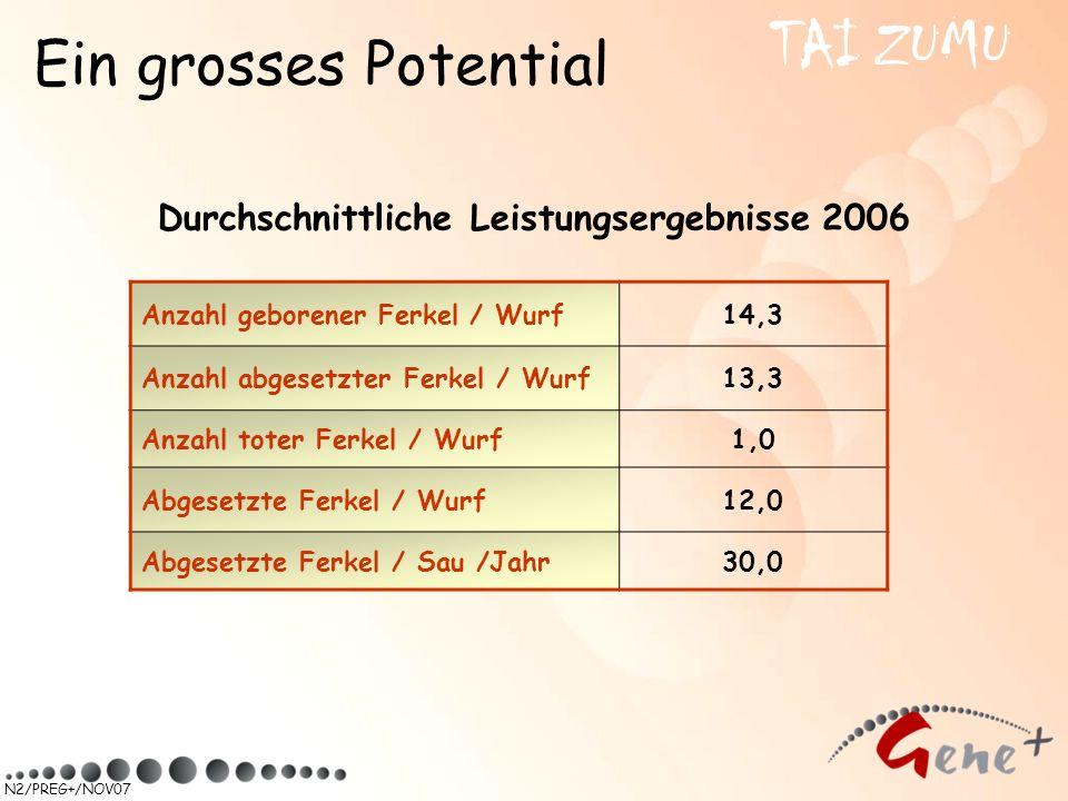 Durchschnittliche Leistungsergebnisse 2006