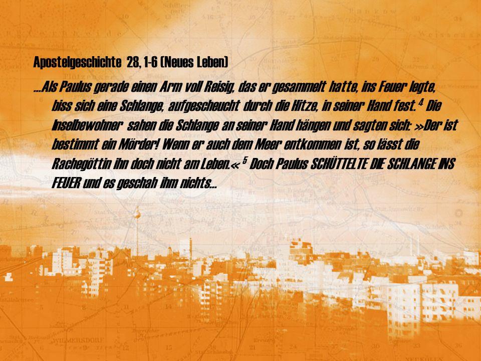 Apostelgeschichte 28, 1-6 (Neues Leben)