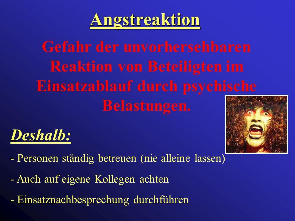 Angstreaktion Gefahr der unvorhersehbaren Reaktion von Beteiligten im Einsatzablauf durch psychische Belastungen.