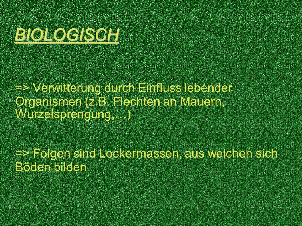 BIOLOGISCH => Verwitterung durch Einfluss lebender Organismen (z.B. Flechten an Mauern, Wurzelsprengung,…)