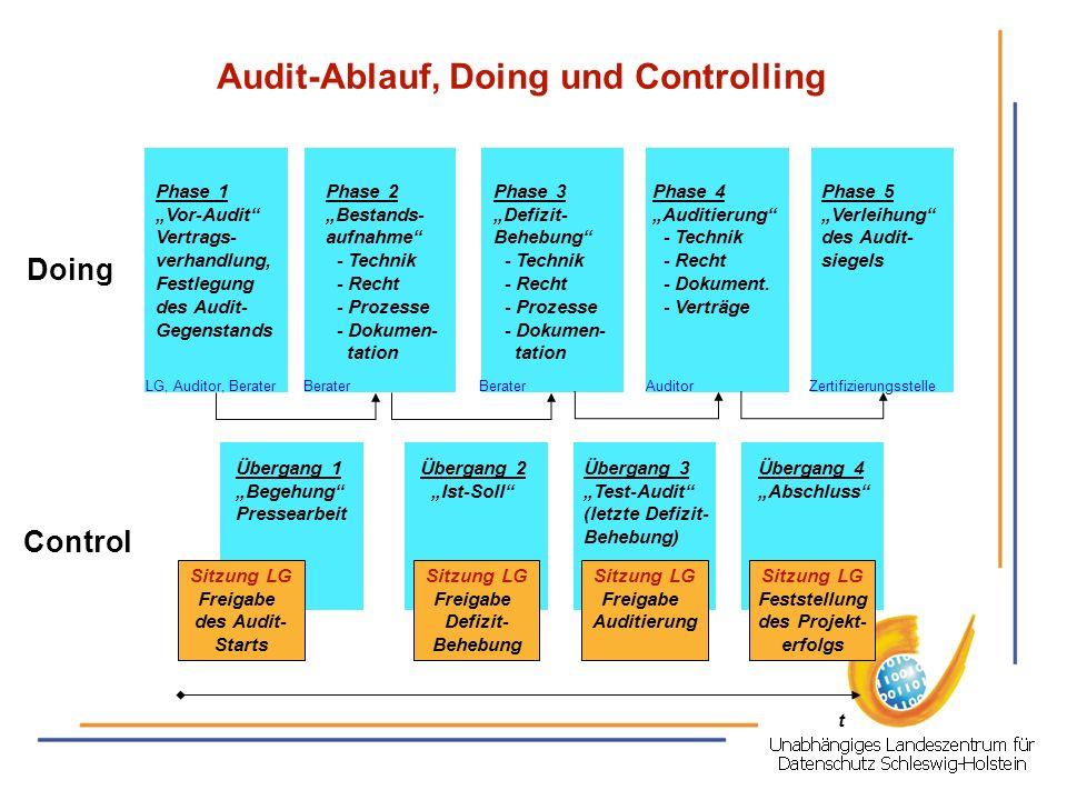 Audit-Ablauf, Doing und Controlling