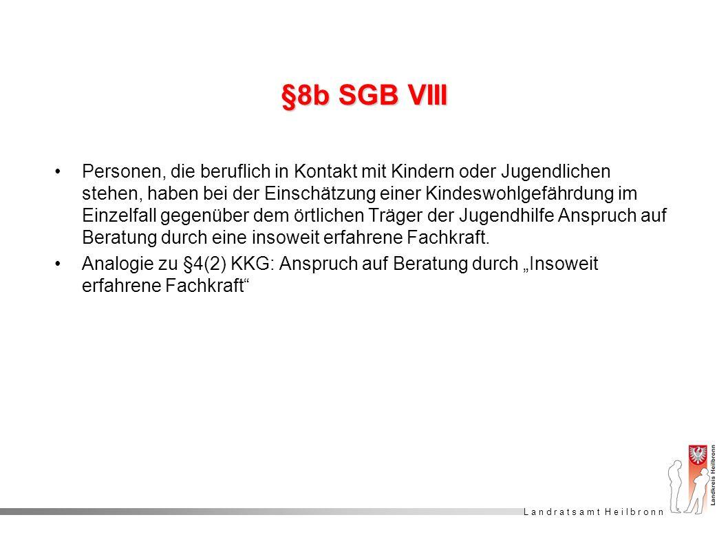 §8b SGB VIII