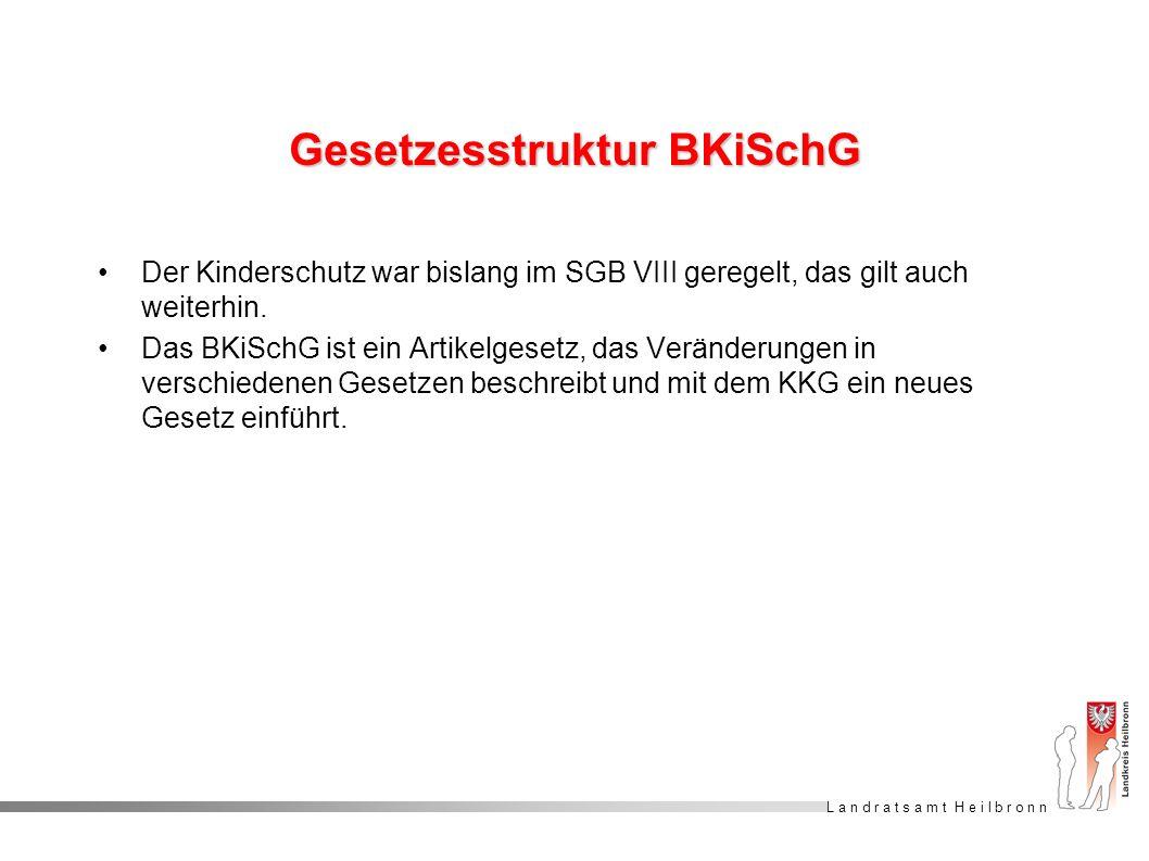 Gesetzesstruktur BKiSchG