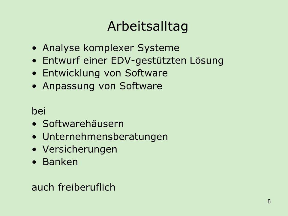 Arbeitsalltag Analyse komplexer Systeme