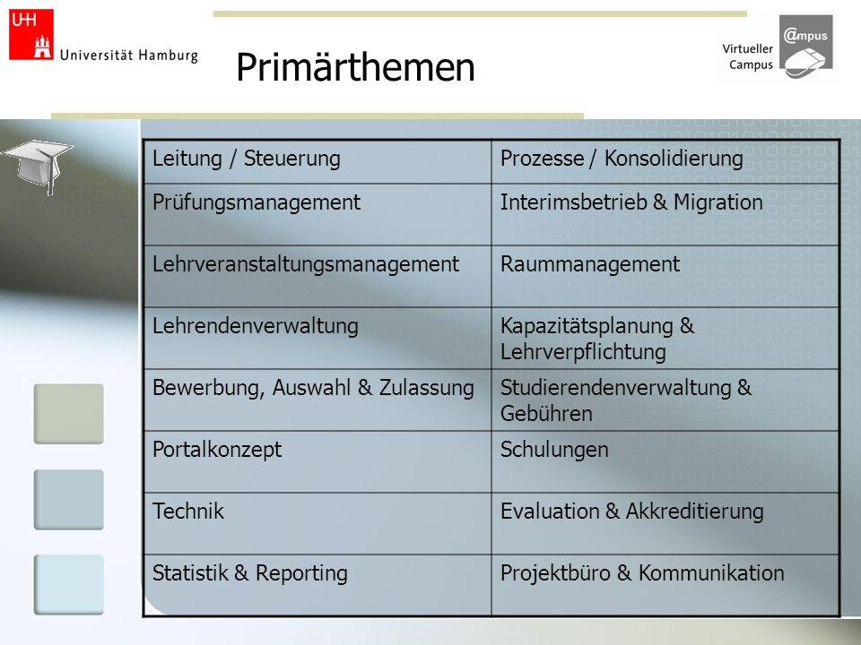 Primärthemen Leitung / Steuerung Prozesse / Konsolidierung