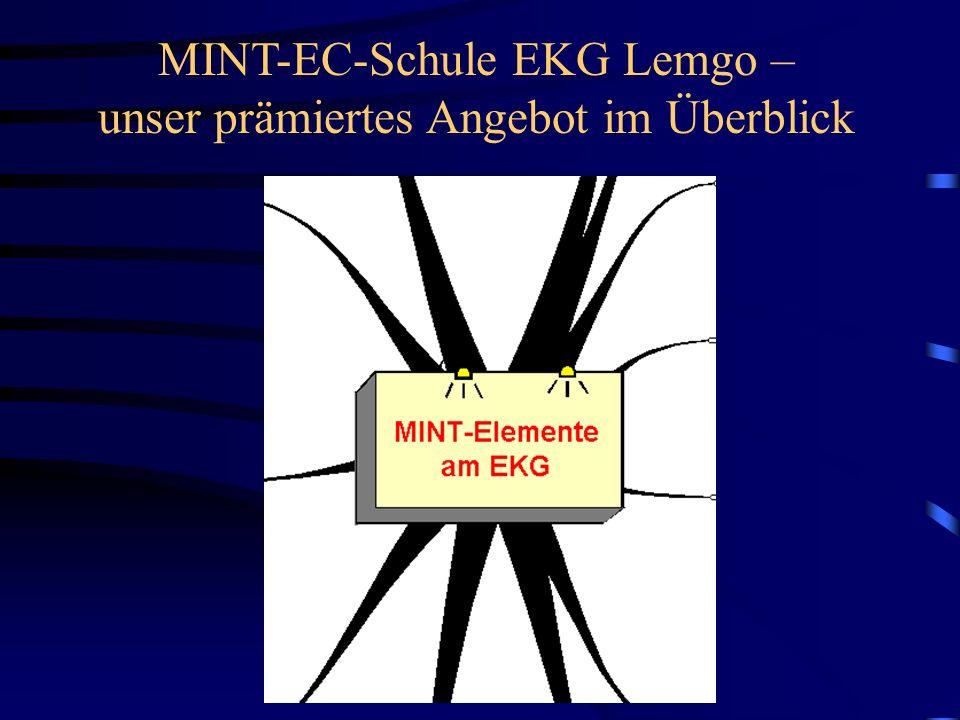 MINT-EC-Schule EKG Lemgo – unser prämiertes Angebot im Überblick