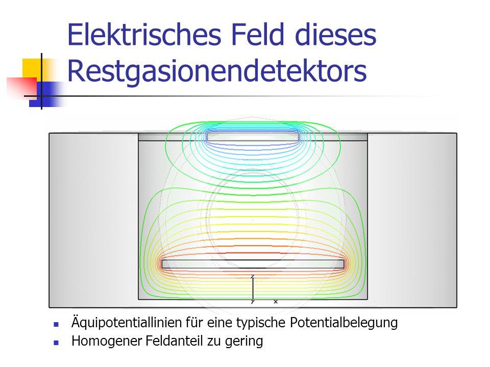 Elektrisches Feld dieses Restgasionendetektors