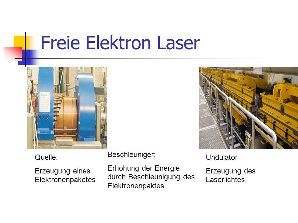 Freie Elektron Laser Beschleuniger: