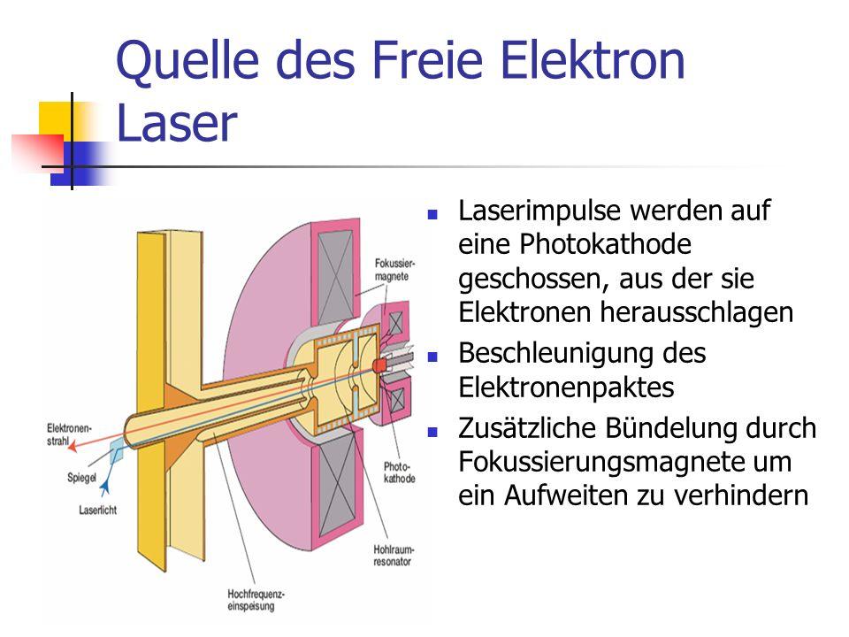 Quelle des Freie Elektron Laser