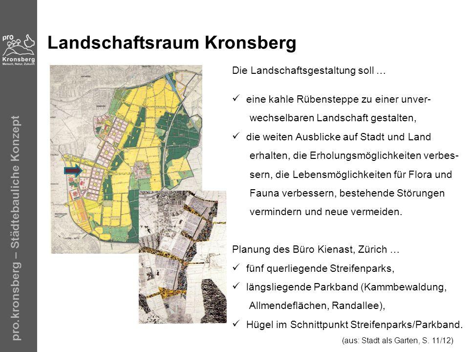 Landschaftsraum Kronsberg