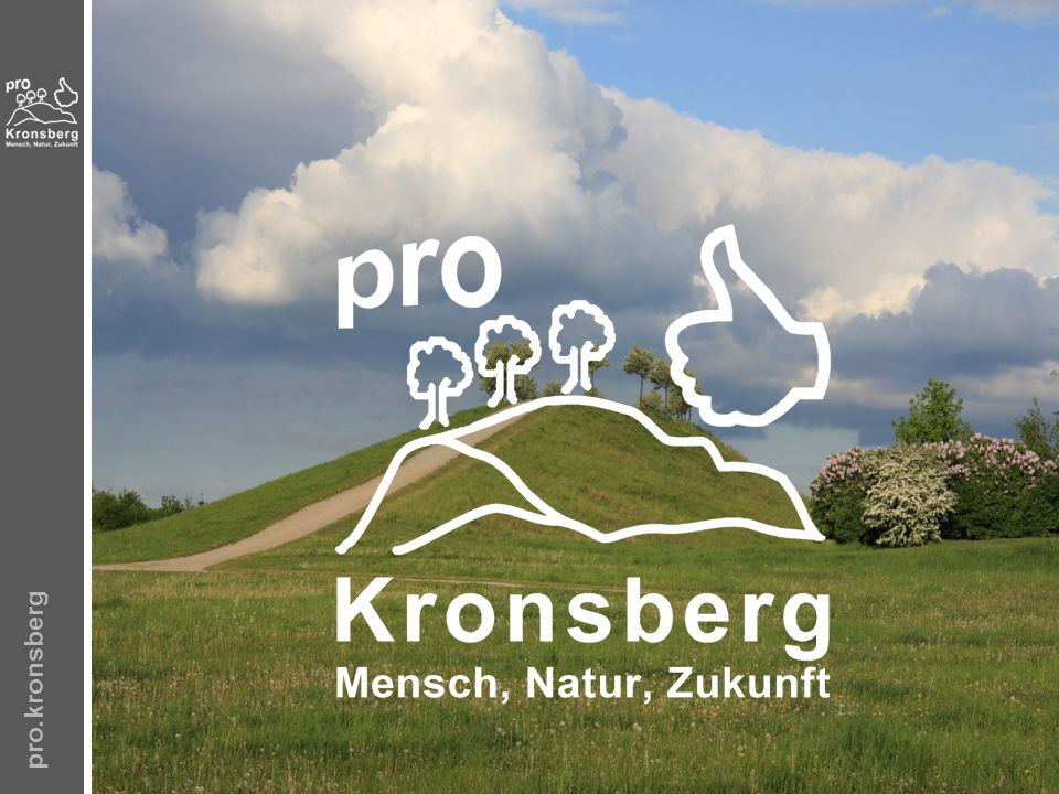 pro.kronsberg