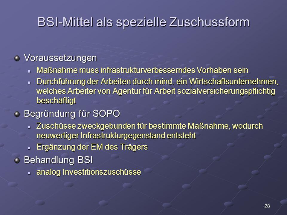 BSI-Mittel als spezielle Zuschussform