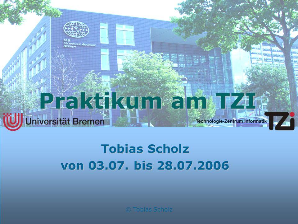 Praktikum am TZI Tobias Scholz von 03.07. bis 28.07.2006
