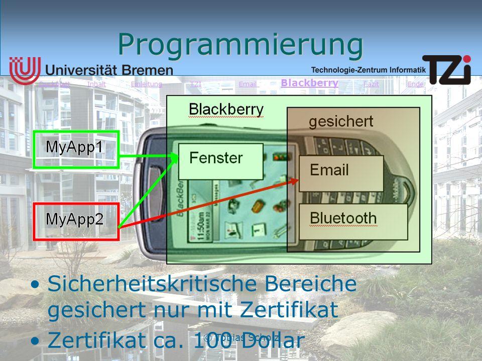 Deckblatt Inhalt Einleitung TZI Email Blackberry Fazit Ende