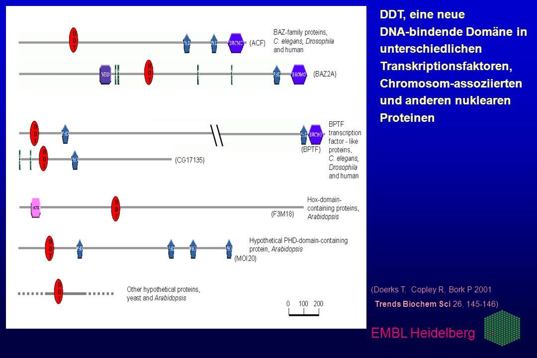 (Doerks T, Copley R, Bork P 2001