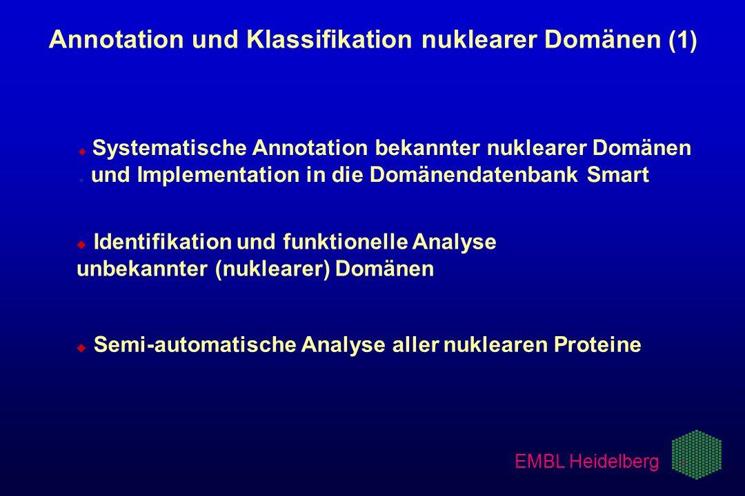 Annotation und Klassifikation nuklearer Domänen (1)
